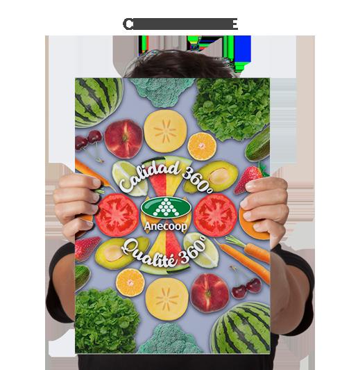Corporative Anecoop