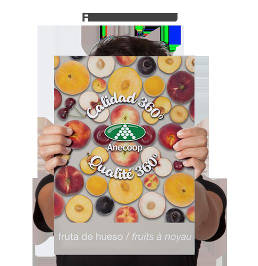 Fruits a Noyau