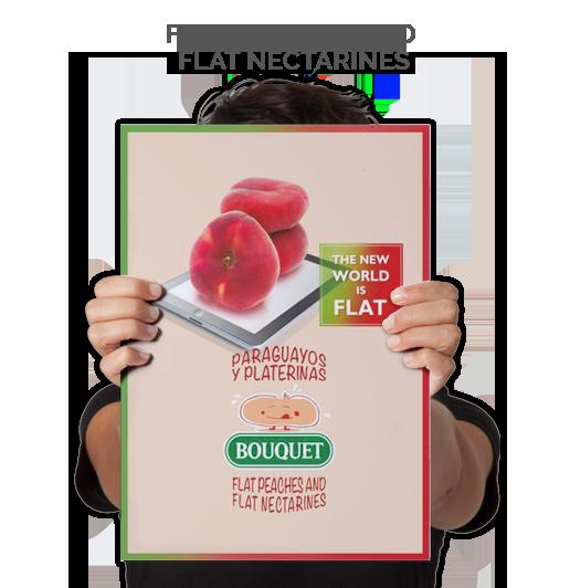 Flat Peaches and Flat Nectarines