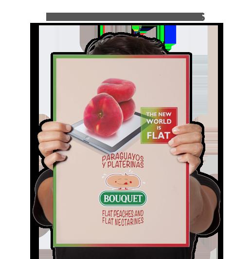 Paraguayos y Platerinas