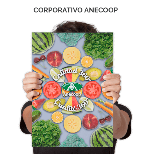 Corporativo Anecoop