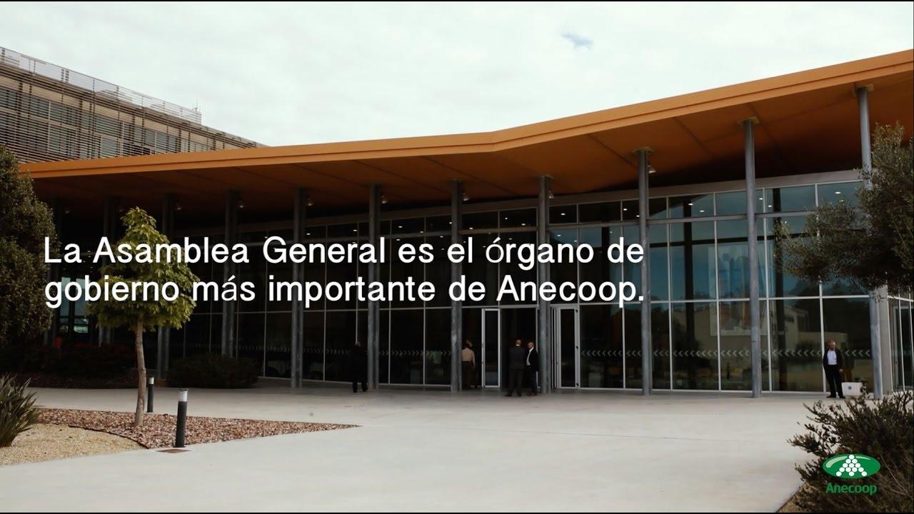 Vídeo resumen de la Asamblea General de Anecoop – Marzo 2017