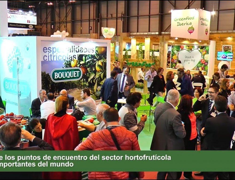 Le Groupe Anecoop en Fruit Attraction 2017