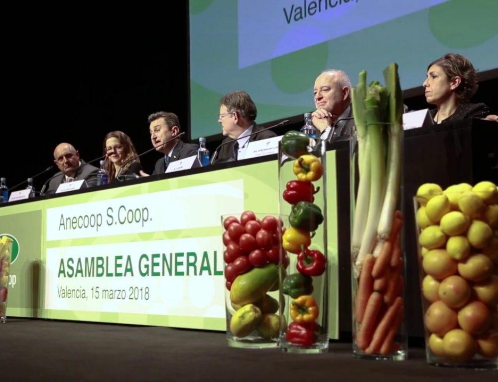 Vidéo de l'Assemblée générale d'Anecoop – Mars 2018