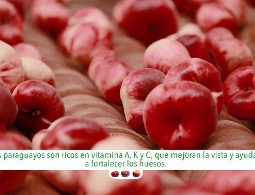 Anecoop presenta: Paraguayos y Platerinas Bouquet