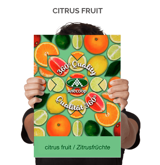 Citrus Fruit Brochure 2018