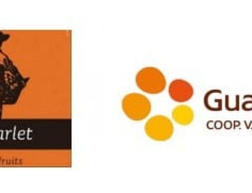 Las cooperativas de Carlet y Guadassuar alcanzan un acuerdo para crear una nueva entidad de segundo grado