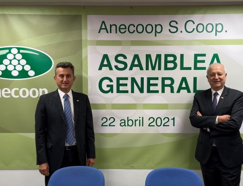 ANECOOP cierra un ejercicio histórico con una facturación récord de 770,5 millones de euros